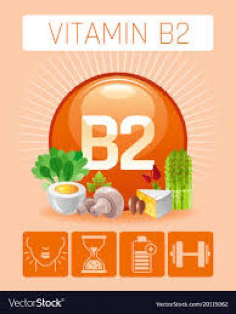 Importance Vitamin B2